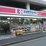ドラッグストア ココカラファイン東中野5丁目店 80m(周辺)