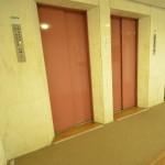 エレベーターホール(共用部分)
