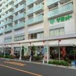 スーパー サミットストア 鍋屋横丁店 404m(周辺)