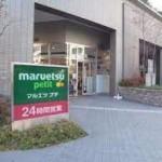 スーパー マルエツプチ東池袋三丁目店 299m(周辺)