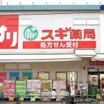 ドラッグストア スギ薬局北新宿3丁目店 279m(周辺)